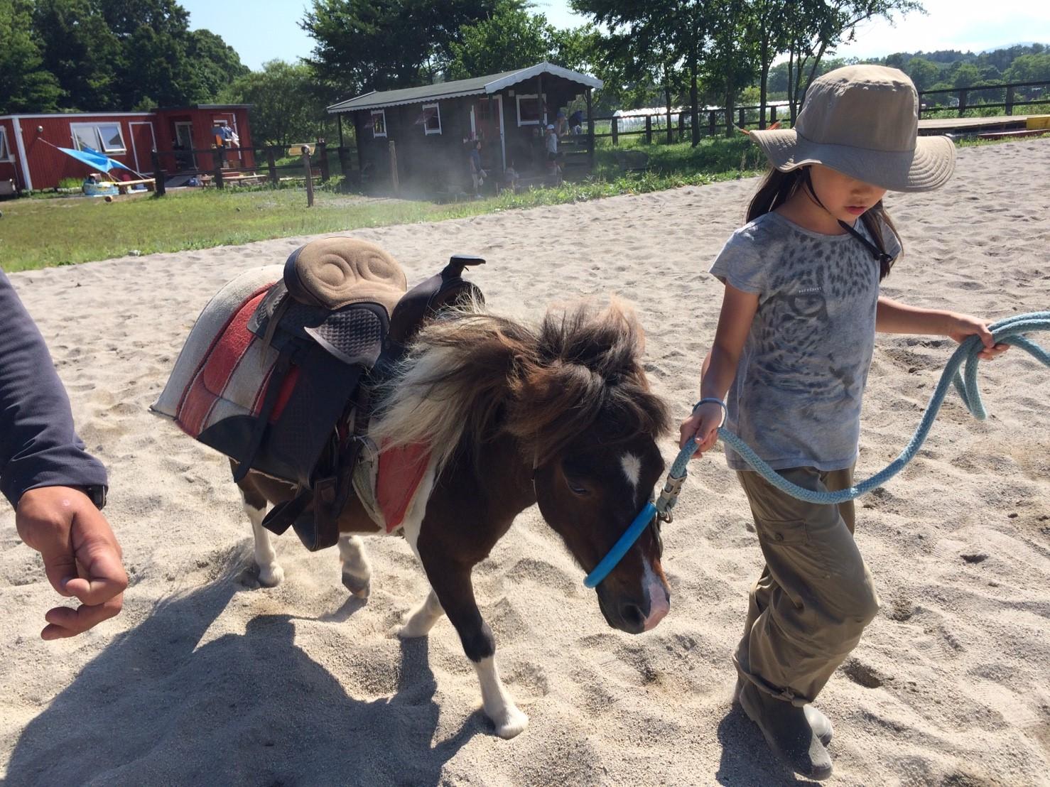北海道新幹線で行く!動物と暮らす北海道・牧場キャンプ~動物の飼育体験や農業体験など