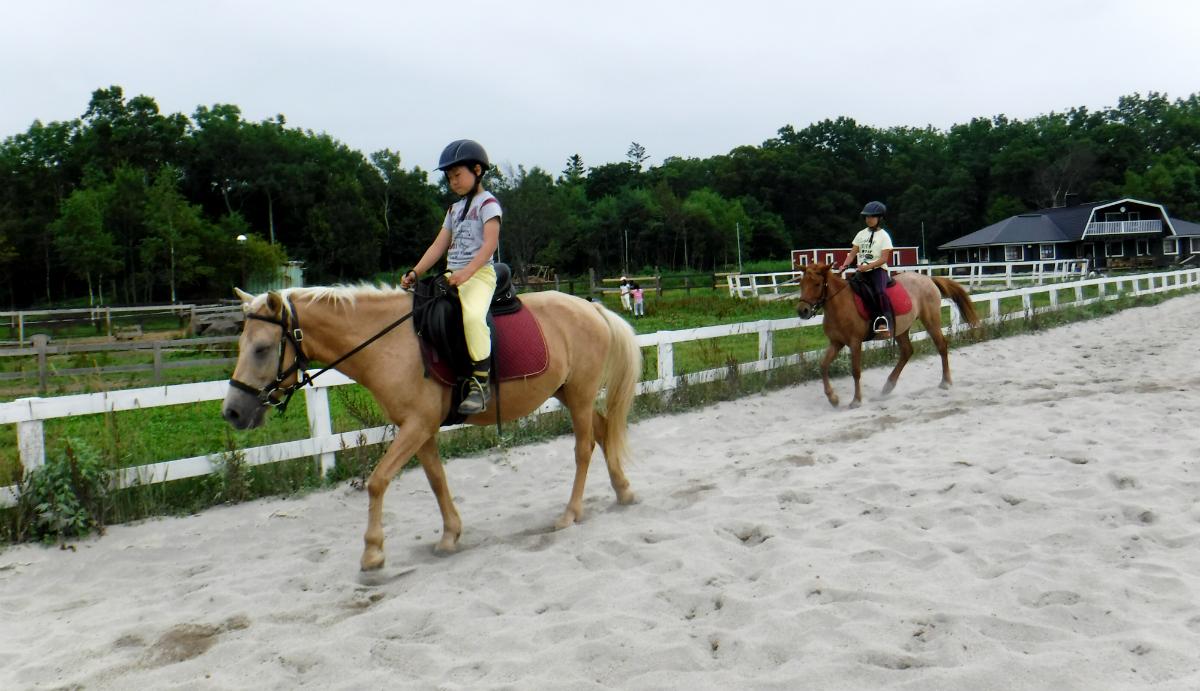 17714:北海道新幹線で行く!馬と旅する北海道・牧場キャンプ