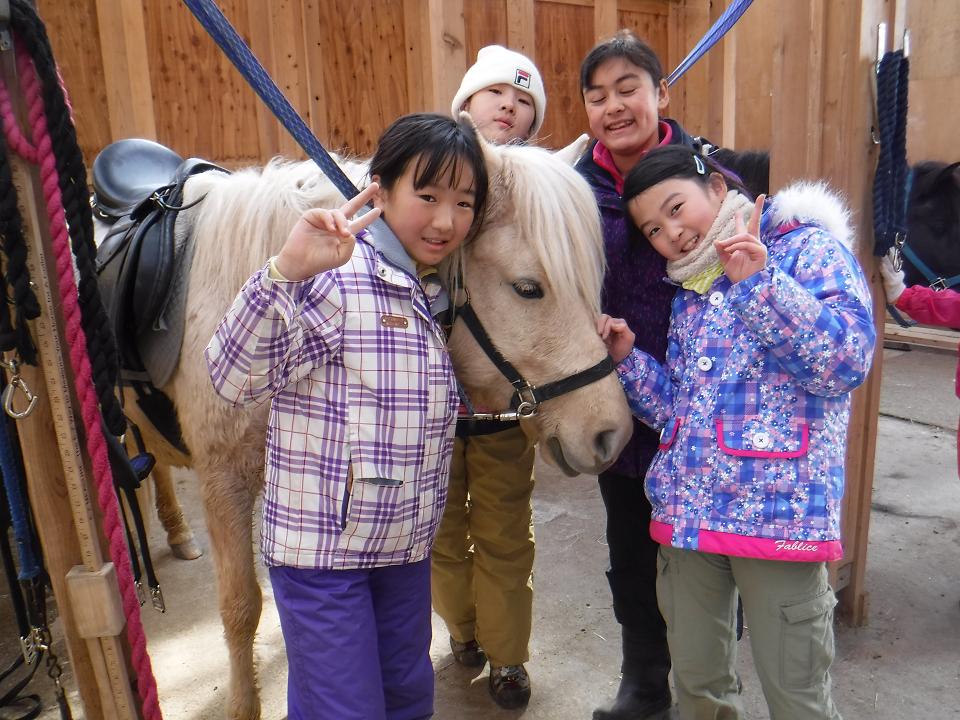 北海道新幹線で行く!馬と暮らす北海道・牧場キャンプ