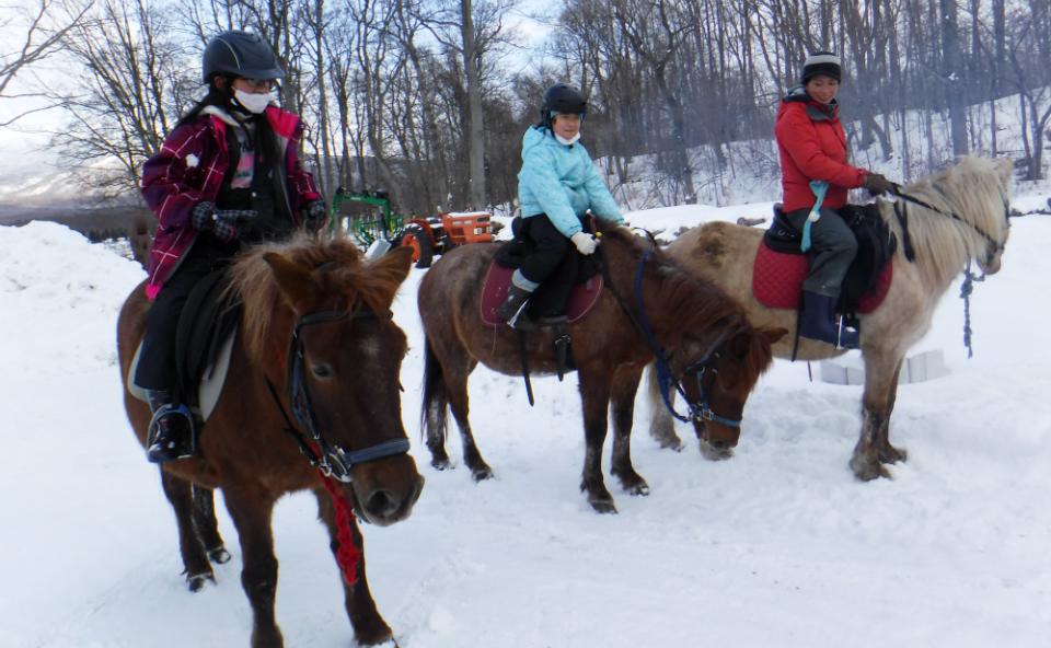 17718:北海道新幹線で行く!馬と暮らす北海道・牧場キャンプ