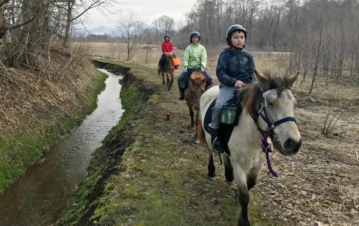 17723:北海道の牧場で暮らす!子ども乗馬キャンプ