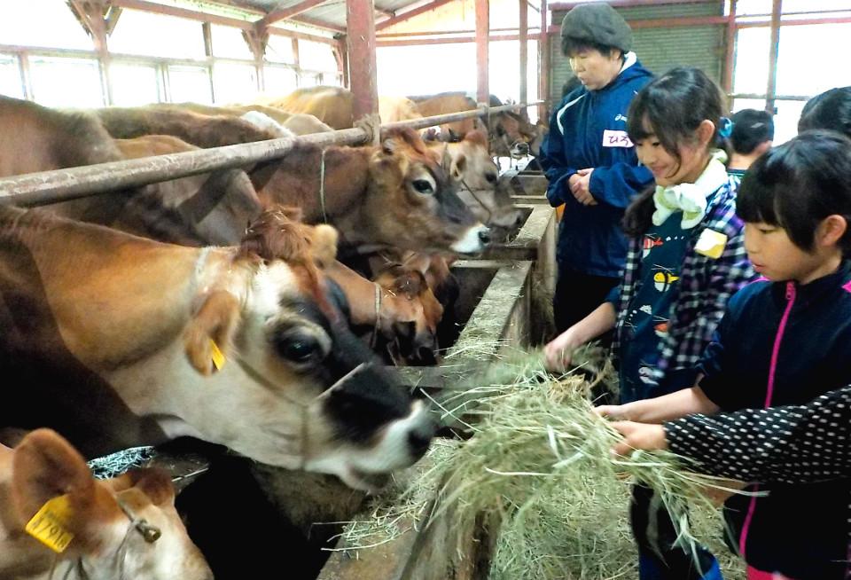 17744:田舎に泊まって牧場・酪農体験!はじめてキャンプ